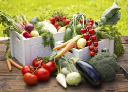 Влияет ли лунно-огородный гороскоп на урожай
