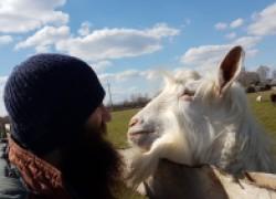Как образованные москвичи уехали в заброшенную деревню и стали фермерами
