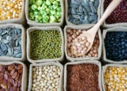 Что хвалят в магазине семян