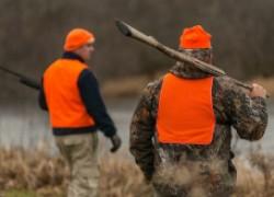 Правила охоты – 2021: жилеты, ограничения на калибры и другое