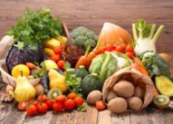 Идем на рекорд: овощи-тяжеловесы и их выращивание