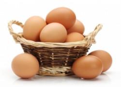 Часто встречаемые болезни яиц