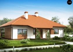 Традиционный одноэтажный дом с крытой террасой и оранжереей
