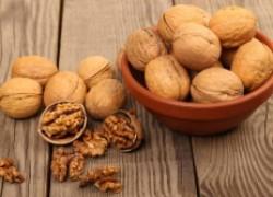 Крепкий орешек: как завести тонкокорые орехи