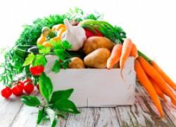 Овощи: посадка с гарантией