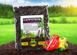 Сапропель – самое чистое удобрение в мире