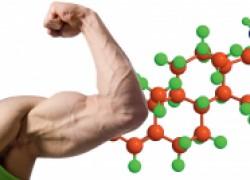Как выяснить высокий тестостерон у мужчины