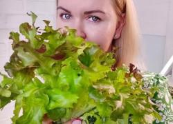 Технология выращивания микрозелени из семян