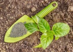 Можно ли перейти на гуминовые удобрения
