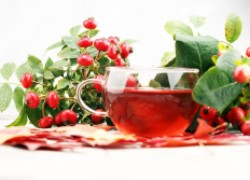 Сироп из ягод шиповника подстегнет иммунитет