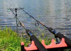 Топ-5 шнуров для фидерной ловли