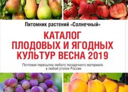 """Питомник растений """"Солнечный"""""""