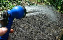 Четыре верных способа обогатить почву гумусом