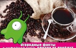 Кофейная гуща сразит слизней наповал