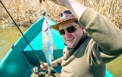 Астраханские секреты засолки вкуснейшей рыбы от Олега ПАХОЛКОВА
