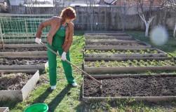 Умные грядки – выбор современного огородника