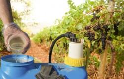 Инсектициды и акарициды в вопросах и ответах