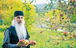 Как хранят яблоки валаамские монахи