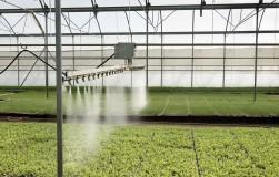 Как защитить растения от жары в теплице