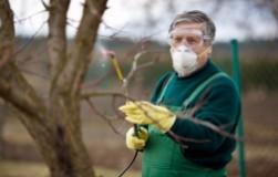 Оксихом поможет от грибков