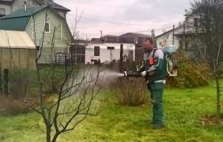 Чем обработать сад осенью