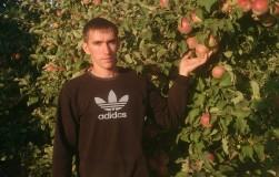 Сорта яблок, которые удивили в этом году