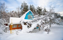 Зимние опасности, или Нужно ли бояться внезапной зимы