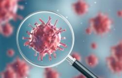 Что происходит с организмом при коронавирусе