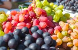 Лучшие сорта винограда народной селекции