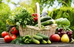 Сорта овощей для огородника-новобранца