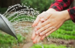 Руки после огорода: как вернуть красоту