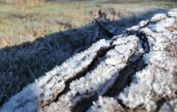 От промерзания почва плодородней
