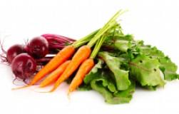 Морковь будет ровная, а свекла компактная