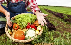 Потери урожая: причины и последствия