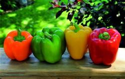 Сладкий перец будет урожайным