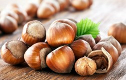 Сортовой фундук: орехи с перепелиное яйцо