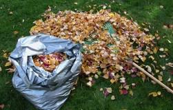 Осенний компост – самый лучший