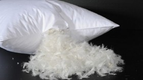 Пух, полупух, перо, шлейс, смеси, подушки, одеяла.