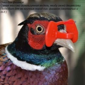 Корма для птицы и с/х животных