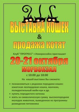 ВЫСТАВКА КОШЕК 20-21 октября МОРВОКЗАЛ