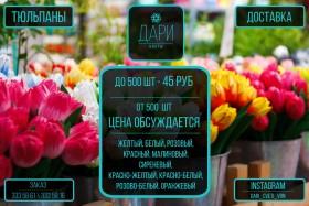 Тюльпаны превосходного качества по оптовой цене