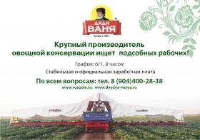Сборщик овощей