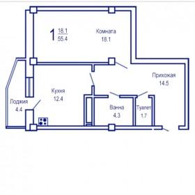 Большая однокомнатная квартира 55,4 м2