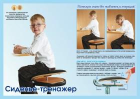 Сиденье тренажёр для спины и позвоночника Толстунова