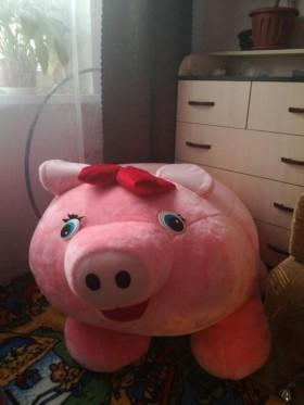 Свинья-сиденье