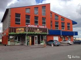 Отдельно стоящее коммерческое здание, 700 м²