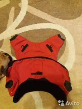 Комбинезон для маленькой собаки