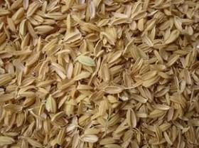 Рисовая лузга (шелуха) в мешках. Доставка по России
