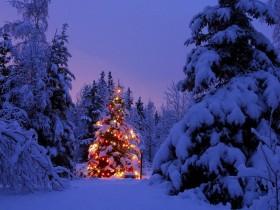 Новый год и Рождество в гостиница «Альпина». Приэльбрусье