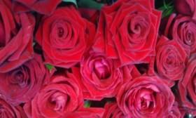 Лепестки роз.Свадебные букеты